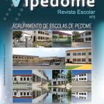 vipedome2-2013